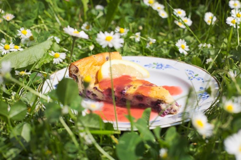 low carb cheese cake kohlenhydrate käsekuchen quarkkuchen fitness wellness fit abnehmen